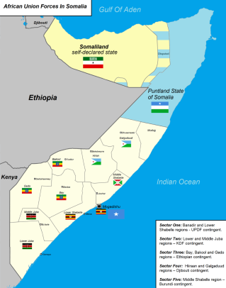 Why does Al Shabaab target Kenya? | An Africanist Perspective
